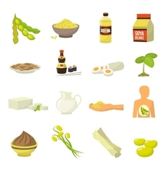 Soy Food Icons vector image