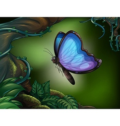 A butterfly in the rainforest vector