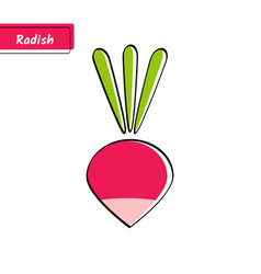 Flat red radish education card with black contour vector