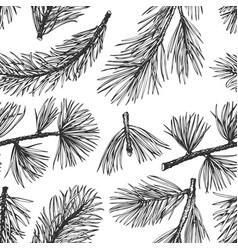 pine needles hand drawn seamless pattern vintage vector image