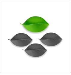 Three gray and one green individuality leaf tree vector