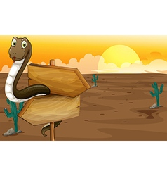Snake in the desert near the signboard vector image vector image