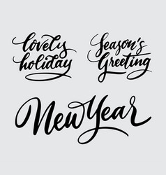 new year and lovely holiday handwriting calligraph vector image vector image