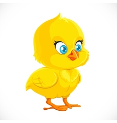 Cute little yellow cartoon chicken vector image