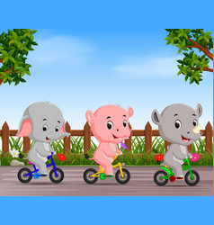 funny animals cycling in the road vector image
