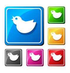 trendy round blue twitter bird social media web vector image
