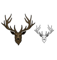 Wild deer animal mascot with antlers vector