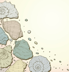 Hand drawing seashell background vector image vector image