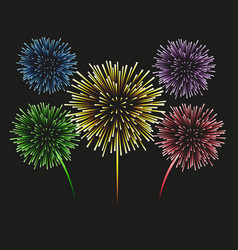 fireworks set on a black background vector image