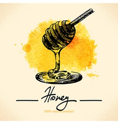 Honey background with hand drawn sketch vector image