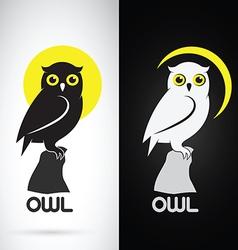 Image of an owl design vector