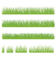 Set of green grass isolated on white background vector