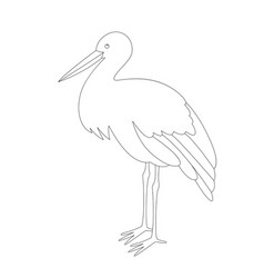 Stork stends lining draw vector