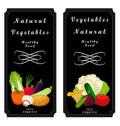 the set food vector image