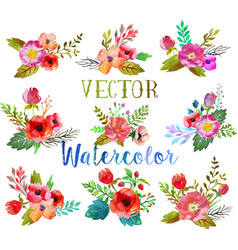 watercolor buttonholes vector image