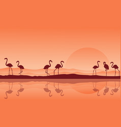 silhouette of flamingo with reflection on the lake vector image vector image