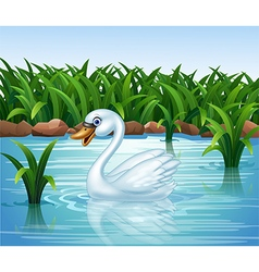 Cartoon beauty swan floats on river vector image