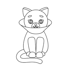 Cat sick icon of for web and vector