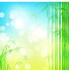 green bamboo forest vector image vector image