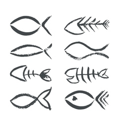 Isolated hand drawn fish signs vector image