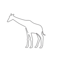 one continuous line drawing cute giraffe vector image