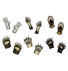 paws animals or footprints and wildlife hands vector image