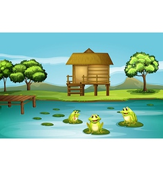 A pond with three playful frogs vector image vector image