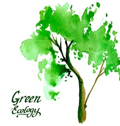 Young tree painted in watercolor vector image