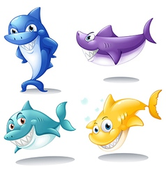 A group of sharks vector image
