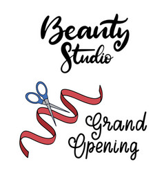 beauty studio lettering vector image