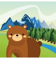 Brown bear icon image vector
