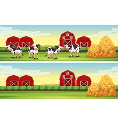 Farm scenes with cows and barns vector