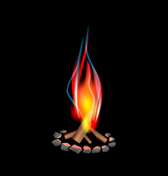 Realistic bonfire vector