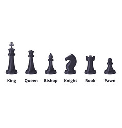 set chess icons set isolate on white vector image