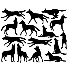 Wolf silhouettes vector image vector image