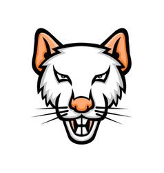 Albino laboratory mouse mascot vector