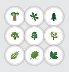 flat icon bio set of baobab leaves maple and vector image