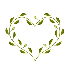 Olives Leaves and Fruits in A Heart Shape Frame vector image