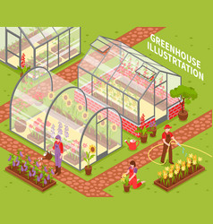 colored greenhouse composition vector image vector image