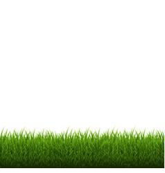 Grass border isolated vector