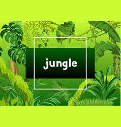 background with jungle plants vector image