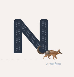 Blue letter n with numbats vector