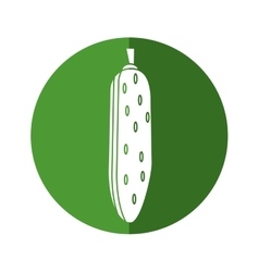 Cucumber vegetable healthy nutrition icon green vector