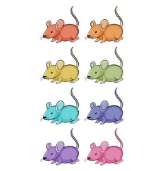 isolated set little rats in many colors vector image