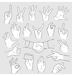 set hand vector image