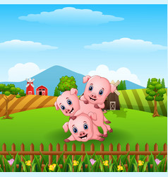 Three little pig playing together vector