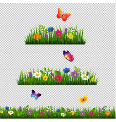 grass border with flower collection isolated vector image vector image