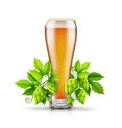 Glass of light lager beer vector