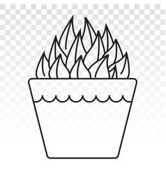 Haworthia cooperi decorative plant line art icon vector