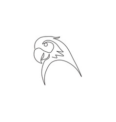 one continuous line drawing cute parrot bird vector image